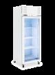 Williams Diamond LD1GW 1 Glass Door Freezer